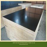 Low Price Good Melamine WBP Glue Film Faced Plywood