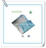 使い捨て可能な妊婦のパッド