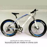 Bicicleta de pneus de gordura de neve com melhor venda feita na China (MTB-37)