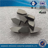 Высокие концы инструмента Yg6 карбида Perfermance C125