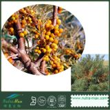 100% Natrual море Buckthorn Extract (3%~60% Seabuckthorn)
