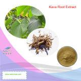 Выдержка корня 100% естественная Kava Kava (Kavalactones 30%, 4:1 ~20: 1)