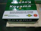 Accumulatore per di automobile automatico della batteria di SMF 72018mf-220ah 12V