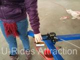 La diversión mecánica del pájaro de Whirly del carrusel monta el juego
