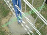 PVC Coated Double Wire Fence Factoryとの熱いDipped Galvanized