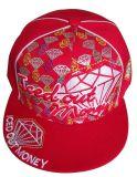 Casquillo / gorra de béisbol / Deporte Cap / casquillos Armarios con Flat pico / sombrero (NE020)