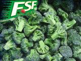 IQF brócolos