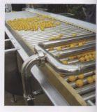 Planta de tratamiento del zumo de fruta de la nueva tecnología/máquina del jugo para la venta
