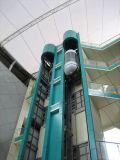 Levator panoramique
