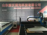 Machine de découpage de laser de fibre d'acier du carbone à vendre