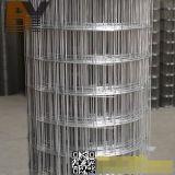 Acoplamiento de alambre soldado pajarera cubierto PVC galvanizado del acero inoxidable