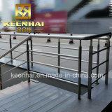 Inferriata esterna dell'acciaio inossidabile scala/del balcone nel disegno moderno