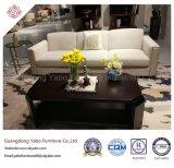 Mobília moderna do hotel com a sala de visitas para o sofá do Três-Assento (YB-W05)