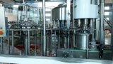 Usine d'eau minérale à faible coût prix en usine
