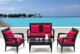 Сад садовой мебелью диван, PE плетеной диван (TG-015)