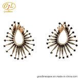 925純銀製を持つ女性のための銀製の宝石類3A CZのイヤリング(E6953C)