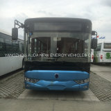 Lusso 12 tester del bus di bus elettrico della città