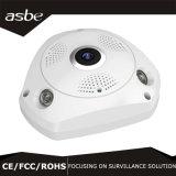 3.0MP Ahd Panorama Fisheye IP van de Veiligheid van kabeltelevisie van 360 Graad Camera