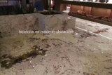 Гранитные плиты для монтажа на стену оболочка/асфальтирование каменными/Миниатюры на стене