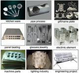 Tagliatrice professionale del laser della fibra di CNC del fornitore per per il taglio di metalli