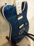 La calidad de la marca OEM Professiobnal guitarra elec.