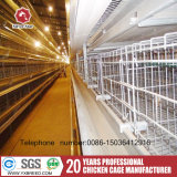 مصنع مموّن دواجن تجهيز آليّة دجاجة طبقة قفص تصميم