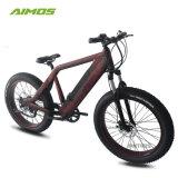 専門のEbikeの工場強力で強いデザイン山の電気バイク