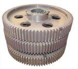 El excéntrico de la rueda de engranaje de transmisión utilizado en una caja reductora de velocidad