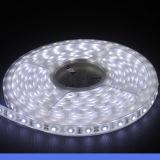 300LEDs 60W avec lumières de bande blanches blanches/fraîches blanches/pures chaudes de Watertproor SMD5050 DEL de couleur pour la décoration d'hôtel/marché/pièce/aéroport
