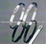 Serres-câble non-enduits d'acier inoxydable de Bille-Blocage