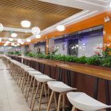 (SP-CS394) Muebles modernos del restaurante del café de la corte de alimento