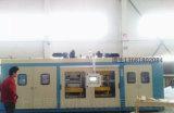 Vide en plastique automatique de Zs-6272e formant la machine