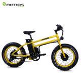 20*4.0二重モーター14.5ah 48V 750W脂肪質のタイヤの電気バイク