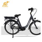 中国の高品質電気都市バイクEbike