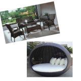 Nuova macchina moderna della mobilia del patio del rattan con l'alta qualità