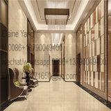 telha de assoalho de madeira do mármore da porcelana do olhar de 900*1800mm (XY918002P)