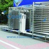 Gewundene Gefriermaschine für das Tiefkühlkost-Aufbereiten