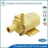Mini12v 24V Gleichstrom-schwanzlose Schleuderpumpe für Saft-Hersteller