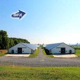 Casa de pollo prefabricada de acero del nuevo diseño en granja avícola