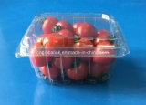 cestello di plastica della frutta delle coperture superiori trasparenti della frutta dell'animale domestico 250g