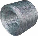 최신 판매 검정에 의하여 단련되는 Wire/G. i. 철사 또는 최신 담궈진 /Electro Gavanized 철 철사 (zkj)
