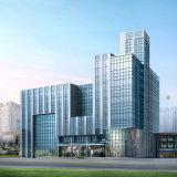 Diseño de la pared de cortina de Foshan para el edificio suntuoso