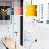 Lámpara moderna de la lámpara del diseño casero de aluminio