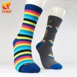 Trifft buntes Geschäft der Form-Männer Baumwollgefäß-Socke hart