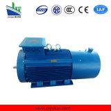 Ie2 Ie3 hohe Leistungsfähigkeit 3 Phasen-Induktion Wechselstrom-Elektromotor Ye3-355m2-4-250kw