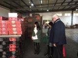 Goma de tomate hecha en las exportaciones de China 70g bien para África