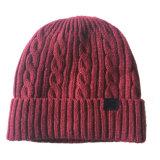 Chapeau épais de Beanies chauds de l'hiver tricoté par impression du chapeau tordu par câble unisexe des femmes de Mens (HW415)