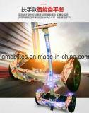 elektrischer Roller des Stoß-10inch mit 700W