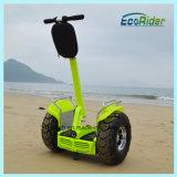 70km de portée Ecorider deux roues Electric Motorcycle Scooter électrique vélo électrique