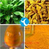La Salud Natural Extracto de Cúrcuma Longa curcumina polvo naranja